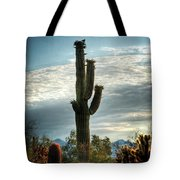 Colors Of The Morning  Tote Bag