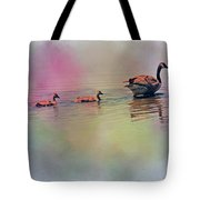 Colors Of The Rainbow Tote Bag