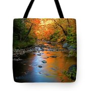 Colors On A Stream Tote Bag