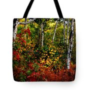 Colors On Mcclure Pass Tote Bag