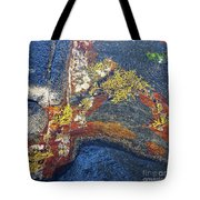 Colors On Rock II Tote Bag