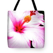 Colors Under The Sun Tote Bag