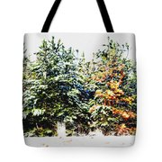 Coloured Trees  Tote Bag