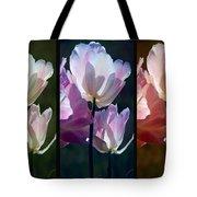 Coloured Tulips Tote Bag