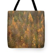 Colourful Autumn Leaves. Tote Bag
