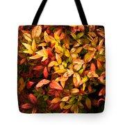 Colours Of Autumn  Tote Bag