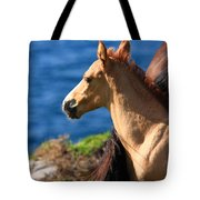 Colt By The Sea Tote Bag
