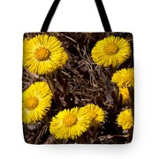 Coltsfoot Ring Tote Bag