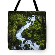 Columbia Gorge 1 Tote Bag