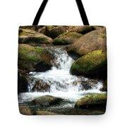 Columbia Gorge 2 Tote Bag