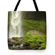 Columbia River Gorge 1 Tote Bag