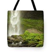 Columbia River Gorge 1 Tote Bag