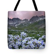 Columbine At America Basin Tote Bag