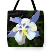 Columbine Colorado State Flower Tote Bag