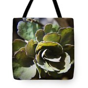 Columbine Foliage Tote Bag