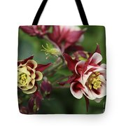 Columbine In Spring Tote Bag