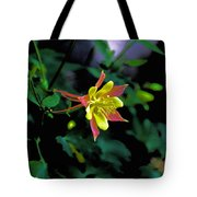 Columbine Outstanding Red Yellow  Tote Bag