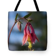 Columbine Sentinals Tote Bag