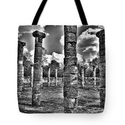Columns Of Support Tote Bag