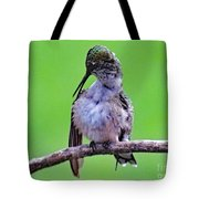 Combing His Feathers - Ruby-throated Hummingbird Tote Bag