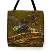 Come Along With Me Dragonflies Tote Bag