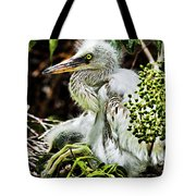 Come On Feathers Tote Bag