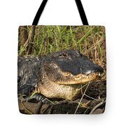 Come On Over Tote Bag