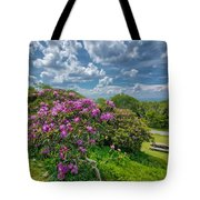 Come To The Craggy Tote Bag