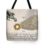Comet, 1664 Tote Bag