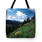 Comin' Round The Mountain Tote Bag