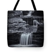 Coming Down Gently Tote Bag by Evelina Kremsdorf