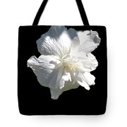 Coming Out Of The Shadows Tote Bag