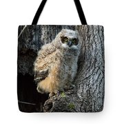Coming Out Tote Bag