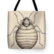 Common Bedbug, Cimex Lectularius Tote Bag