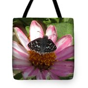 Common Checker Butterfly Tote Bag