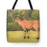 Common Eland Tote Bag