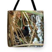 Common Gallinule Tote Bag