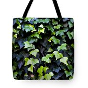 Common Ivy Tote Bag