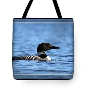 Common Loon, Framed Tote Bag