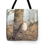 Common Mockingbird Tote Bag