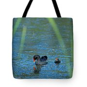 Common Moorhen And Her Baby Tote Bag