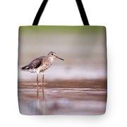 Common Redshank Tringa Totanus Tote Bag