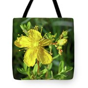 Common St. John Tote Bag