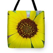 Common Sunflower In Northwest North Dakota Tote Bag