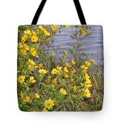 Common Tickseed Tote Bag