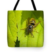 Common Wasp Tote Bag
