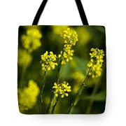 Common Wintercress Flowers Tote Bag