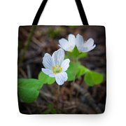 Common Wood Sorrel Tote Bag