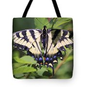 Common Yellow Swallowtail Tote Bag