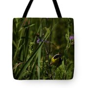 Common Yellow Throat Tote Bag
